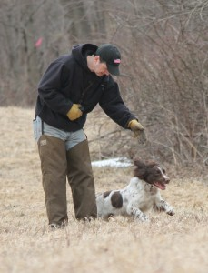 Hunting Dog Training
